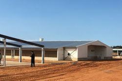 Mozambique Poultry house