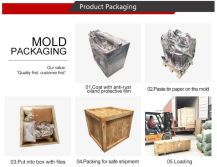Mold Packaging