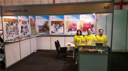 South Africa exhibition 2015.9