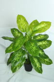 high quality artificial plants of Dieffenbachia