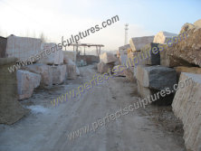 Photo of Raw Material