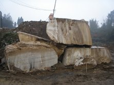 Wood Grain Yellow Marble Quarry