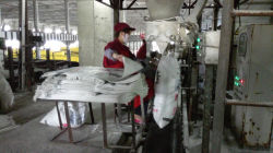 production line of urea