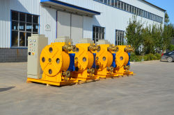 Industrial Peristalting Pump sold to Singapore