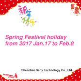 Spring Festival Holiday