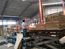 Connecting Poplar veneer for Machines