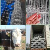 Fixed Knot Field Fence/Deer Fence/Farm Fence/Woven Wire Fence