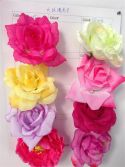 big rose color chart