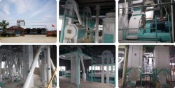 Cooperation Again, Create Excellent Project 120000 Tons Annually Poultry & Livestock Feed Mill Plant Of Anhui HongYun Feed Co., Ltd Final Acceptance
