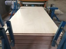 birch plywood for funiture to USA