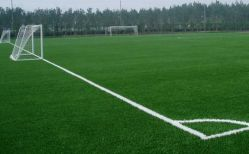 Football Pitch Field Green