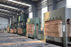 plywood produce machines