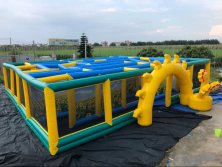 sun flower maze inflatables