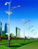 Solar Street Light Project in Shenzhen