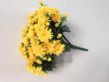 best selling flowers of small daisy