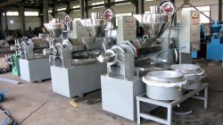 Combined Oil Press Machines Fininshed Products