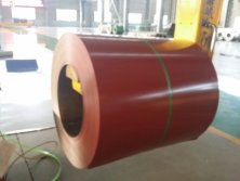 Prepainted Galvalume Steel Coil(PPGL)