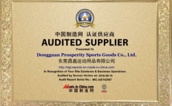 China Audited Supplier