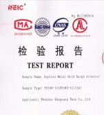 YH10W-33 TEST REPORT