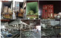 Glass Fence & Railings Exported to Britain