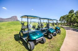 New cart fleet at Legend