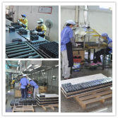 Processing Line in our factory
