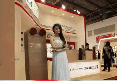 Baode heat exchanger in 2014 Beijing CRH show