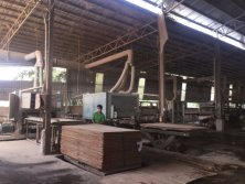 Plywood Factory