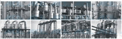 Multi-Effect Falling Film Vacuum Evaporator for Milk