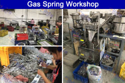 Gas Spring Workshop