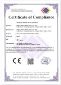 CE certificate of Co2 fractional laser machine