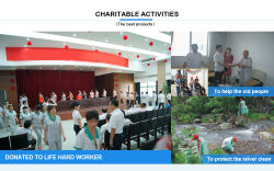 company′s charitable activities