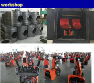 gasoline snow blower workshop