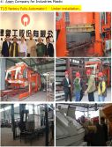 T15 Full Automatic Block Making Machine Line in China