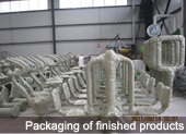 Packaging of finished products