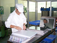Factory Picture (Lamination-2)