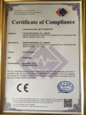 CE certification of LED Floodlight