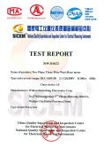 TEST REPORT for two phase electric meter