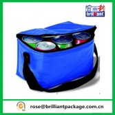 Practical Hot Sale Customized Insulated Non-Woven Cooler Bag