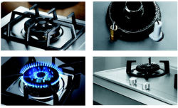 Features of Cooktop from Guangdong OPPEIN Home Group Inc