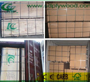 LOAD INTO CONTAINER FOR E-KING TOP PLYWOOD
