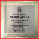 SGS Audit Supplier Certificate