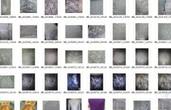 Many Lace Fabric