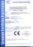 CE for gasoline generator