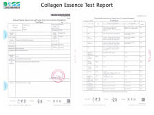 Collagen Elasticity Peptide Serum Test Report
