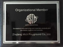 ASTM Organization Member for Mich Playground
