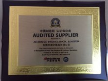 Audited Supplier AE Mould