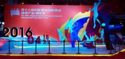 The 2016 session of the tenth Chinese Fujian (Jinjiang) International leather shoes and shoe exhibit