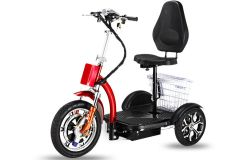 electric tricycle1