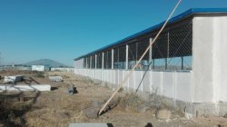 Steel Structure Chicken Farm Project In Ethiopia Is Finished